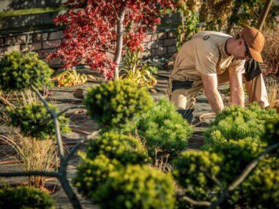 backyard-garden-work-7K7WE5W